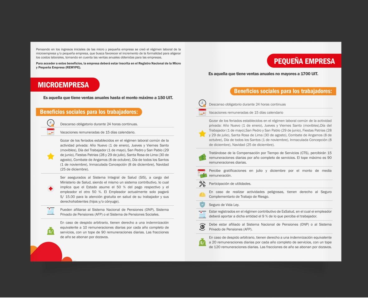 diptico-mtpe-regimen2
