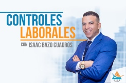 029 Controles Laborales